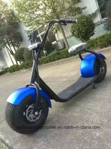 2016 Fashion Citycoco 1000W Harley Scooter
