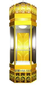 Panoramic Elevator (HSGQ-622) pictures & photos