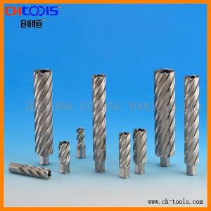 HSS Drill Bit (weldon shank) . (DNHX) pictures & photos