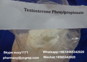 Injectable Test Steroids Testosterone Phenylpropionate 1255-49-8 for Bodybuilder pictures & photos