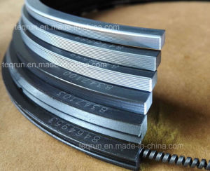 Piston Rings 9516928 pictures & photos
