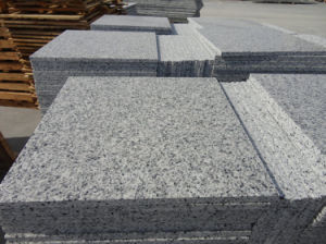 Natural Granite 640 Polished 640 Tiles pictures & photos
