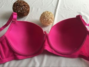 Ladies Lace Nylon Bra, New Arrvial Sexy Bra and Panty (CS16909) pictures & photos