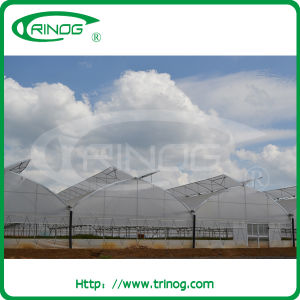 Cheap Commercial Greenhouse for Agricultural Use pictures & photos