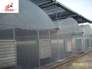 China Manufacturer Greenhouse in Factory Price and Good Quality pictures & photos
