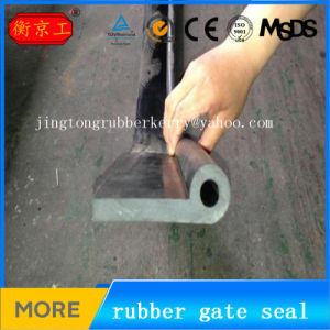 Rubber Musical Note Seal for Dam Gate