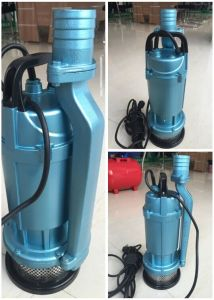 Iran Market Good Selling Submersible Pump (QDX10-16-0.75) pictures & photos