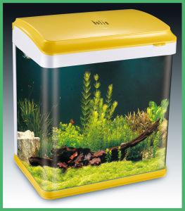 Aquarium Tank, Novelty Fish Aquarium (HL-ATC35) pictures & photos