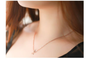 Women Fashion Necklace Stainless Steel Jewelry Necklace (hdx1023) pictures & photos
