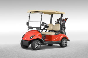 Electric Golf Car for 2 People with Golf Bag (EQ9022) pictures & photos