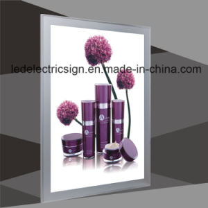 Double-Sided Display with LED Light Box pictures & photos