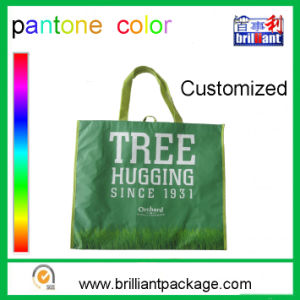 Promotional Cheap Custom Eco-Friendly PP Woven Handle Bag Shopping Bag pictures & photos