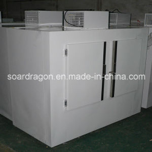 Upright Freezing Bagged Ice Storage Bin with Digital Temperature Controller pictures & photos
