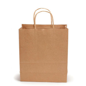 Brown Kraft Paper Bags with Twisted Paper Handle pictures & photos