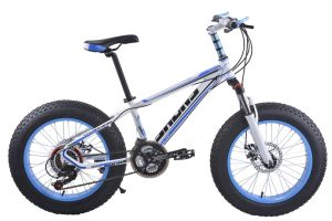 Fat Type Mountain Bicycle & Man Bicycle pictures & photos