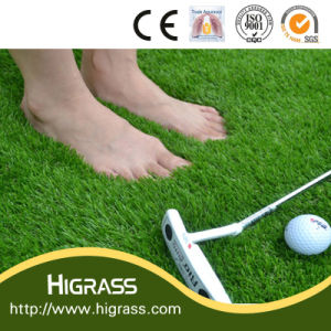 Thick Artificial Synthetic Grass with Soft Touch and Stamp Feeling pictures & photos