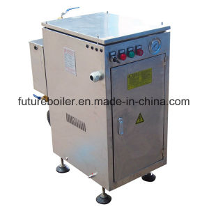 Ldr Mini Electric Steam Boiler pictures & photos
