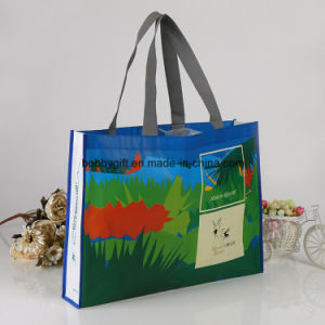 Eco-Friendly Laminated Non Woven Shopping Hand Bag pictures & photos