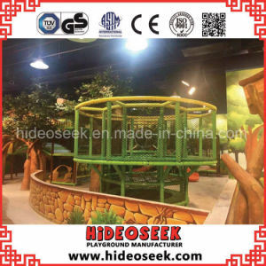 Forest Theme Ce Standard Cheap Indoor Playground pictures & photos