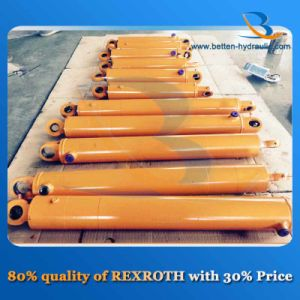 50 Ton Double Acting Hydraulic Cylinder for Sale pictures & photos