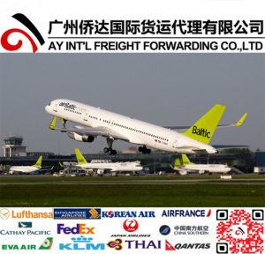 Quick Air Shipping to Riga