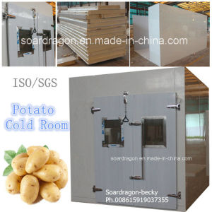Mobile Potato Cold Room of Walk in Chiller for Indoor Use pictures & photos