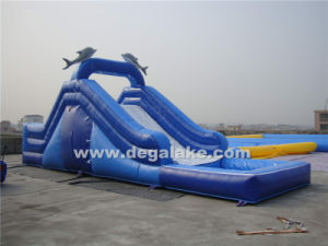 Hot Sale Inflatable Whale Water Slide for Family pictures & photos