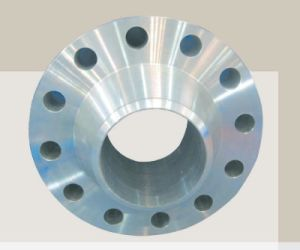 Forging Alloy Steel Stainless Steel Flange pictures & photos
