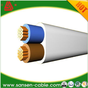 300V H03vvh2-F 2X0.5mm2 PVC Coated Power Cable VDE Flat Cable pictures & photos