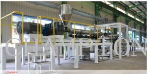 Professional Supplier for PMMA/PC Sheet Production Line pictures & photos