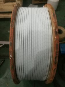 Polyester Film Non-Woven Winding Wire pictures & photos