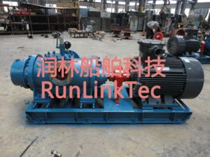 Screw Pump/Double Screw Pump/Twin Screw Pump/Fuel Oil Pump/2lb2-120-J/120m3/H pictures & photos