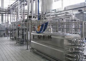 Bottled Orange / Grape Juice Production Line pictures & photos