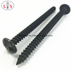 Theftproof Screws/Anti-Theft Screw/Adjusting Screw/Self-Tapping Screw pictures & photos