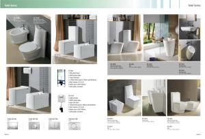 European Style Pedestal Ceramic Basin CE-D306 pictures & photos