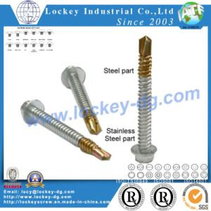 Hex Washer Head Bi-Metal Self Drilling Screw pictures & photos