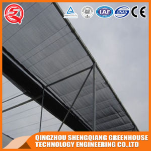 Commercial Steel Structure PC Sheet Greenhouse for Fruit pictures & photos