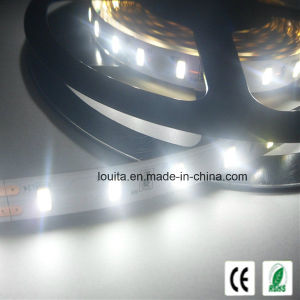 12V Blue SMD 5630 LED Strip Light with Ce Approved pictures & photos