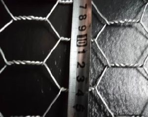 High Tensile Hexagonal Wire Mesh/Chicken Wire/Twisting Wire Mesh pictures & photos
