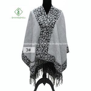 Western Design Leopard Furcal Fashion Cashmere Scarf Galling Shawls pictures & photos