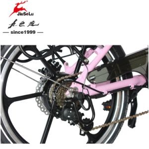 250W 36V Competitive Price Portable Electric Foldable Bicycles (JSL039BL-8) pictures & photos