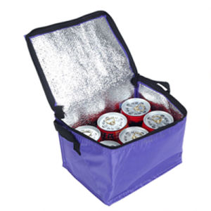 Non Woven Food Hand Cooler Bag pictures & photos