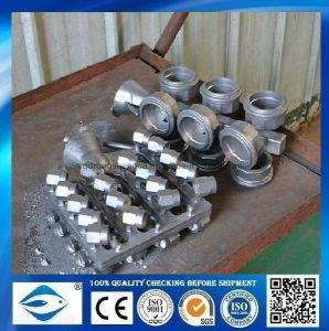 OEM/ODM Service Metal Die Casting pictures & photos