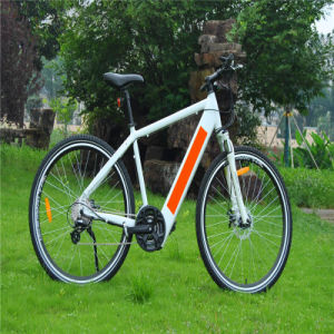 36V 250W Hidden Battery Mountain MTB Ebike Electric Bike Bicycle pictures & photos