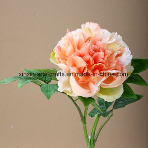 Cheap Peony Artificial Flowers Decorative Flowers Real Touch Flowers