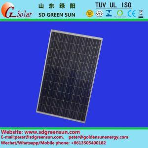 30V Poly Solar Panel 255W-270W Positive Tolerance pictures & photos