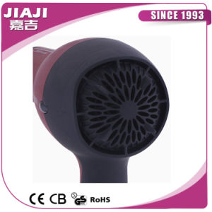 Salon Hair Dryer, Ceramic Hair Dryer, Dual Voltage Hair Dryer pictures & photos