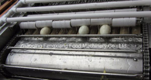 FT-200 Hen Egg Shelling Machine, Egg Shell Removing Machine, Egg Sheller pictures & photos