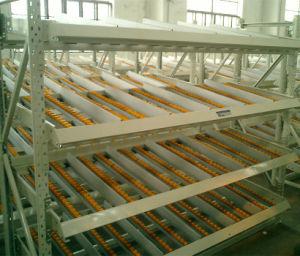 Carton Flow Rack with Fifo Live Storage pictures & photos