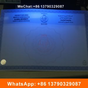 Degree Certificate with Watermark and Hot Stamping Label pictures & photos